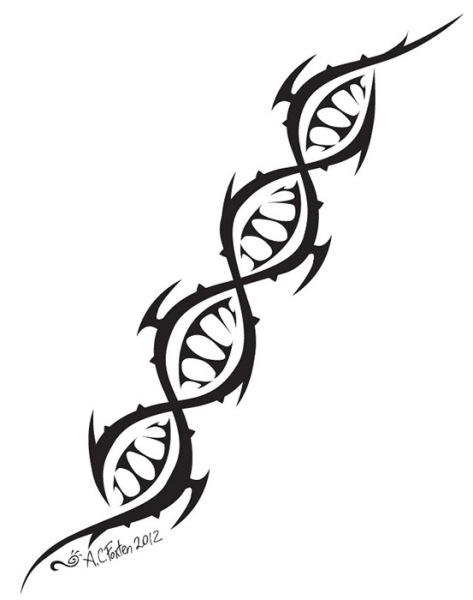 DNA (Ink/ Illustrator 2012)