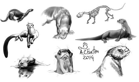 Giant Otters (Mischief, 2014)